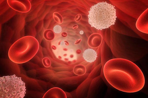 acido urico basso sangue que alimentos hacen aumentar el acido urico tratamiento de la hiperuricemia gota